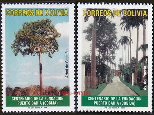Cobija   Ciudad castañera