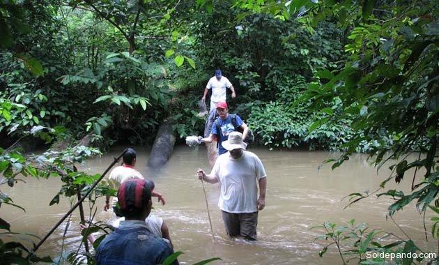 El estudio científico examinó 30 años de datos en parcelas forestales permanentes de la Amazonia. | Foto cortesía Rainfor