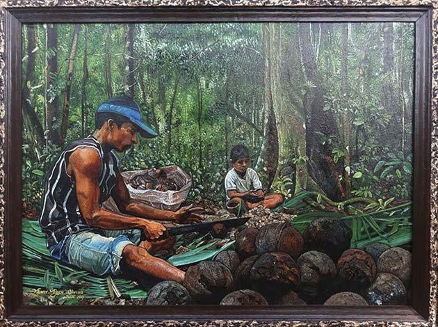 Título: El castañero amazónico