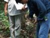 El censo satelital usando el GPS permite un control numérico de los castañares para que cada familia pueda estimar su volumen anual de recolección  y comercialización de la castaña acopiada.
