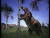 perezoso-gigante