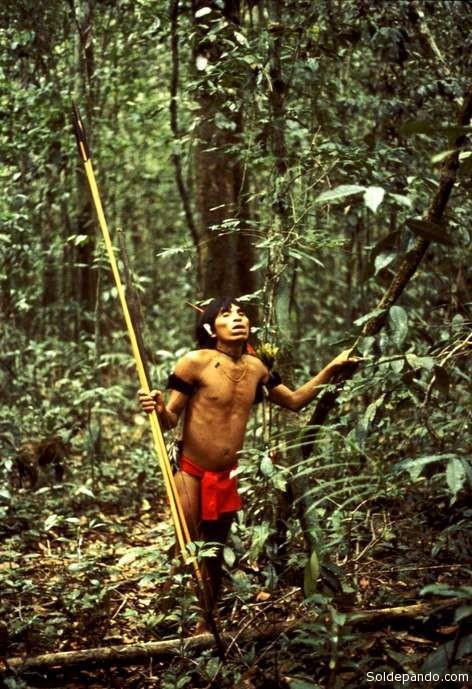 Un cazador yanomami en la selva de Venezuela.   Foto Survival