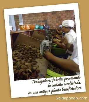 Foto cortesía Radio Riberalta