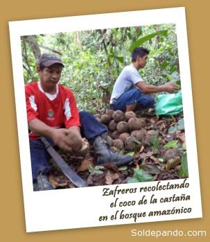 Foto cortesía Rubén Darío Méndez Chávez