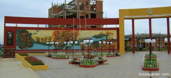 """""""Productos Derivados de la Moringa"""" es el proyecto presentado por la UAP, en asociación con la Umss de Cochabamba."""