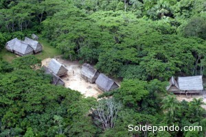 Los bosques de la propuesta Reserva Comunal Matsés alberga una mayor diversidad de plantas que cualquier otra reserva de las tierras bajas de Perú.