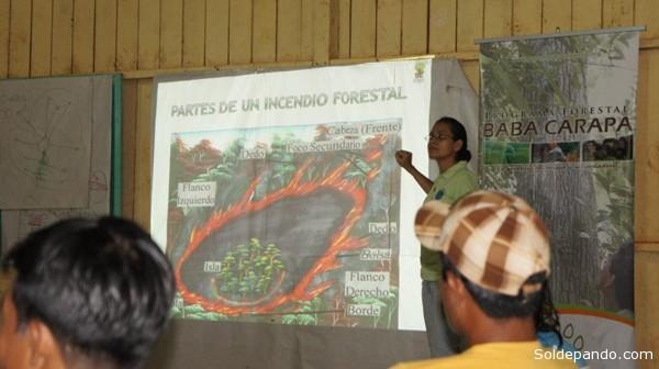 Las investigaciones científicas en la Amazonia deben ser promovidas y fomentadas desde las organizaciones comprometidas localmente con las comunidades amazónicas, sostiene la Otca.