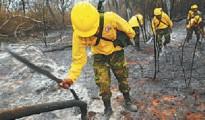 Brigadas forestales se desplazaron desde agosto tras el fuego que se expandió desde San José de Chiquitos a Roboré. | Foto El Deber