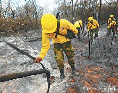 Brigadas forestales se desplazaron desde agosto tras el fuego que se expandió desde San José de Chiquitos a Roboré.   Foto El Deber
