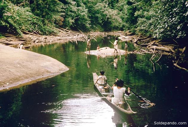 Los akawaios y arekunas pescan en el río Mazaruni y sus afluentes. La presa propuesta inundaría la tierra de estas tribus y destruiría para siempre una zona famosa por su paisaje y su biodiversidad. | Foto ©Audrey Butt Colson