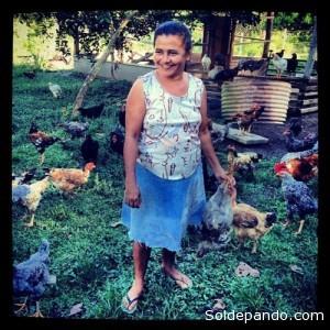 La avicultura forma parte del programa de certificación del Acre, una actividad que no requiere mayor deforestación. | Foto: de Kate Evans/Cifor