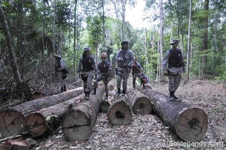 Soldados en un campamento maderero ilegal, en territorio awá. El Gobierno de Brasil puso en marcha un importante dispositivo para expulsar a los invasores ilegales de la selva de los awás. | Foto ©Mário Vilela | Funai