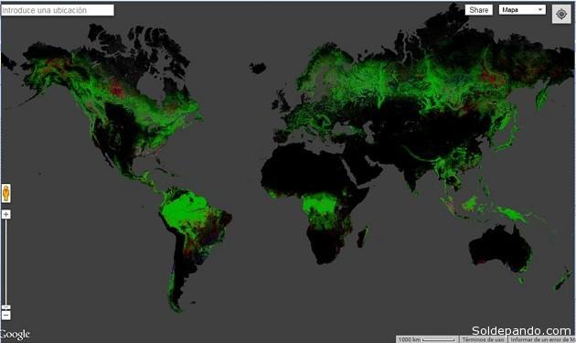 El mapa interactivo permite establecer la pérdida de bosques a nivel mundial.