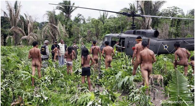 El Gobierno brasileño envió helicópteros, vehículos y puso en marcha un despliegue de centenares de agentes sobre terreno para expulsar a los foráneos que invadían ilegalmente la selva de los awás. | Foto © Silvano Fernandes | FUNAI
