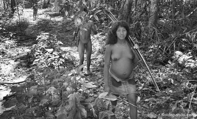 La nación originaria Awa, una etnias amazónicas más amenazadas, ha logrado reconquistar su aislamiento volutario y su modo de vida, exigiendo al gobiernor protega sus bosques de la dep`redfación extractivista.   Foto ©Sebastiao Salgado   Survival