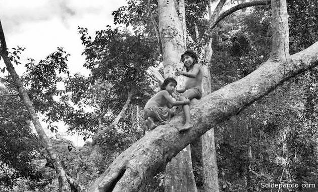 Foto ©Sebastiao Salgado   Survival