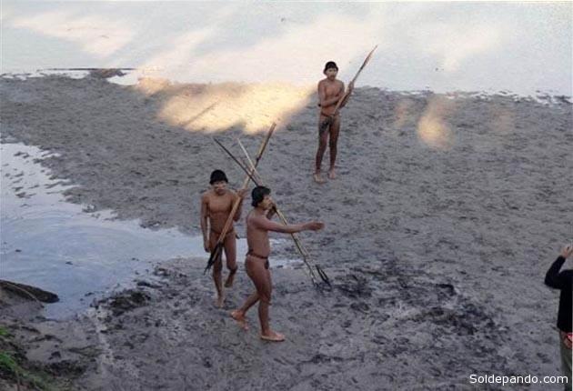 Los Ashaninkas en el Brasil suman menos de 1.000 habitantes que ocupan su territorio dentro el Estado del Acre, también fronterizo con Bolivia, donde una etnia de similares características, los Pacahuara, ha sido definitivamente exterminada como entidad cultural. | Foto Funai