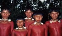 Con el cuerpo pintado para celebrar un rito llamado Wai'a estos niños Xavante pasaron a la adolescencia cumpliendo una ceremonia que todavía se celebra en la aldea Pimentel Barbosa, en el Estado de Mato Grosso. | Foto Rosa Gauditano