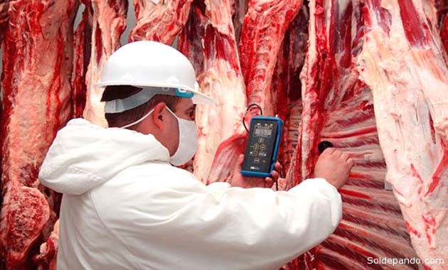 A partir del año 2013, se logró revertir la balanza comercial negativa gracias al incremento justamente de las ventas de carne bovina. |Foto Archivo