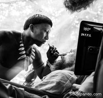 SINOPSIS En busca del sueño chamánico Karamakate fue en su día un poderoso chamán del Amazonas, es el último superviviente de su pueblo, y ahora vive en aislamiento voluntario en lo más profundo de la selva. Lleva años de total soledad que lo han convertido en chullachaqui, una cáscara vacía de hombre, privado de emociones y recuerdos. Pero su vida vacía da un vuelco el día en que a su remota guarida llega Evan, un etnobotánico americano en busca de la yakruna, una poderosa planta oculta, capaz de enseñar a soñar. Karamakate accede a acompañar a Evan en su búsqueda y juntos emprenden un viaje al corazón de la selva en el que el pasado, presente y futuro se confunden, y en el que el chamán irá recuperando sus recuerdos perdidos. Esos recuerdos traen consigo vestigios de una amistad traicionada y de un profundo dolor que no liberará a Karamakate hasta que no transmita por última vez su conocimiento ancestral, el cual parecía destinado a perderse para siempre.