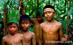 El Bosque amazónico es el hogar ideal para estos niños que lo habitan protegiéndolo, en aislamiento voluntario. | Foto Archivo Sol de Pando