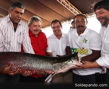 Lula também prestigiou a inauguração da primeira etapa do Complexo de Piscicultura, em agosto de 2013.