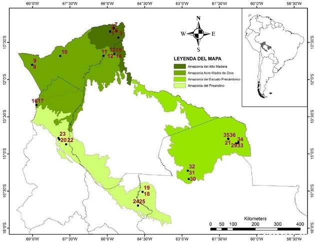 Mapa de los cuatro tipos de bosque amazónico de tierra firme. | Mapa: Alejandro Araujo Murakami.