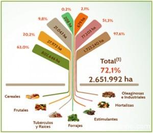 Agropecuaria SC Cultivos