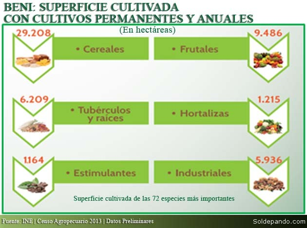 Beni Superficie Cultivada