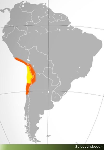 UBICACIÓN DEL DESIERTO EN SUDAMÉRICA En amarillo lo que tradicionalmente se considera Atacama y en naranja otras áreas desérticas colindantes como la cabecera del desierto de Atacama en el sur peruano, el Altiplano andino, la Puna de Atacama y el Norte Chico de Chile.