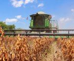 Entre las Exportaciones No Tradicionales de Santa Cruz sobresalen las ventas de soya y sus derivados, que hasta julio alcanzaron un valor de 458 millones de dólares, equivalente al 72% del valor total de las Exportaciones No Tradicionales del Departamento. | Foto IBCE